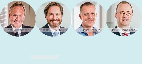 Prof. Dr. Germann, Prof. Dr. Reichenberger, Dr. Helge Schmitz, PD Dr. Hornemann